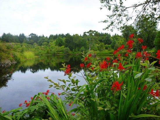 Glenwhan Gardens lake