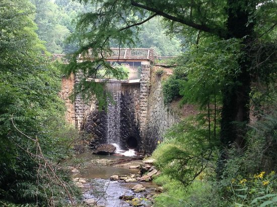 Waterfall Tour Asheville