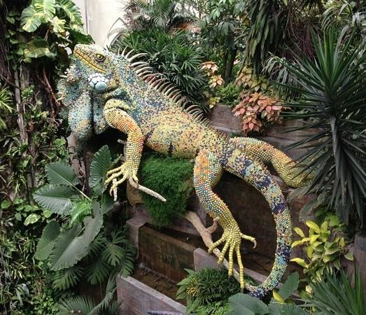 Grand Hotel Guayaquil: the famous iguana by the pool!