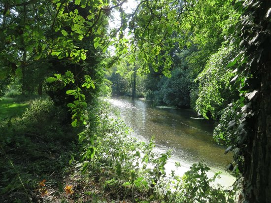 Natural Surroundings: River Gaven runs through the lower section of the walk.