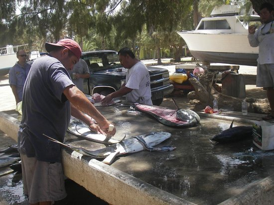 Rancho Leonero Resort : Fish cleaning