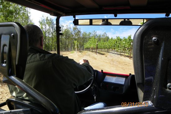 Hahn Estate Winery: Larry, our tour guide