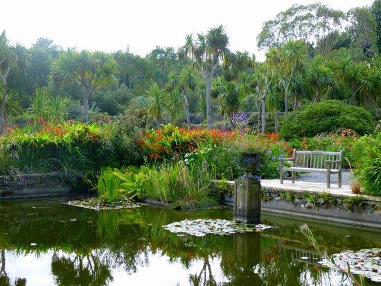 Logan Botanic Garden Botanical