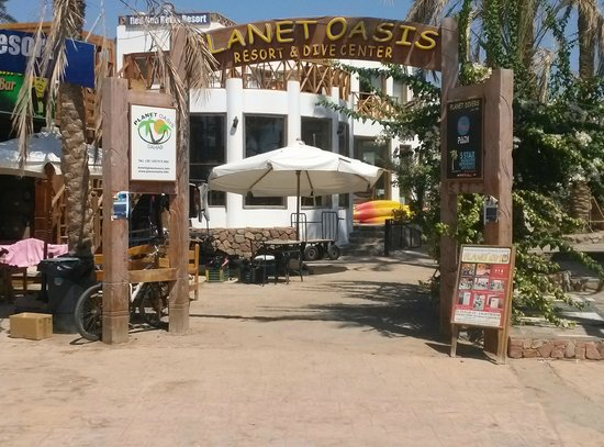 Hotel Planet Oasis : Dejlig Bed and breakfast
