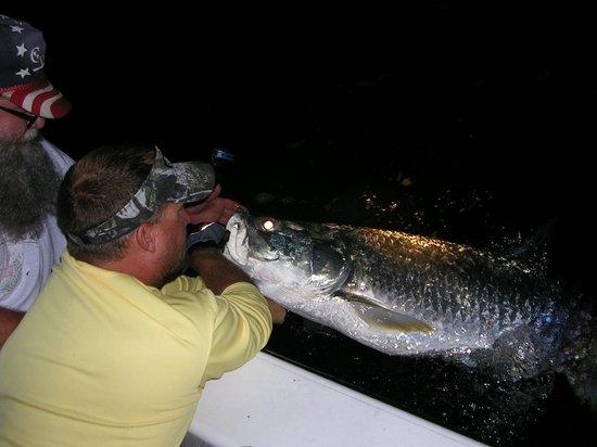 Hook N Line Charters: Big Nightime Tarpon