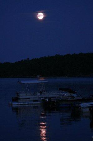 Wolseley Lodge: Full Moon over Wolseley Bay