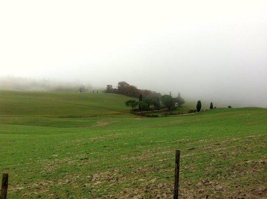 La Bandita : Christmas morning view