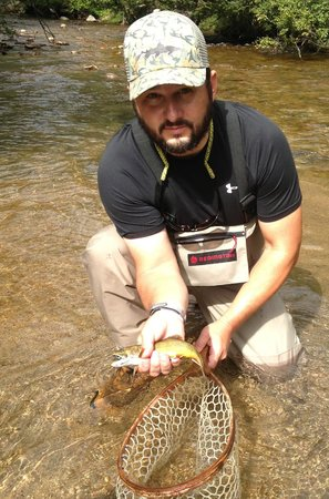 Estes Angler: brown trout
