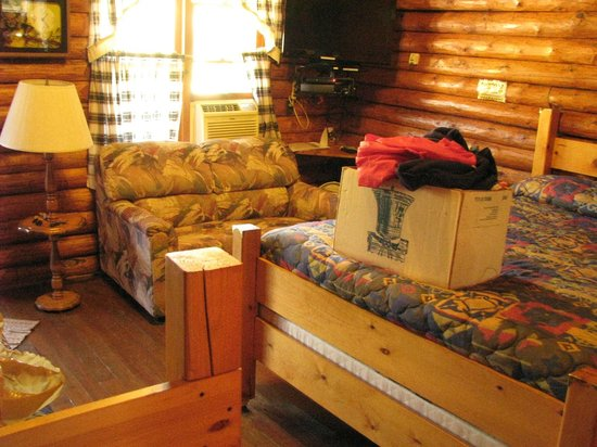 Janssen's Lodestone Motel & Cabins : One other comfy chair besides couch but it broke when I used it.  Couch under TV makes watching
