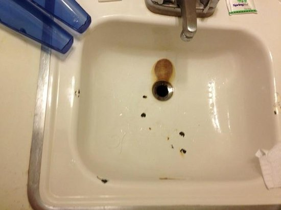 Silver Sands Motel: Rusted out sink