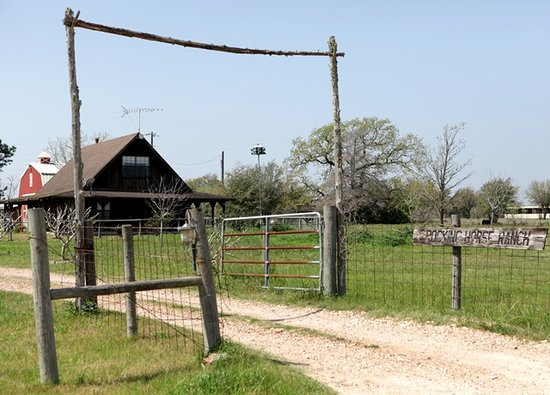 Rocking Horse Retreat