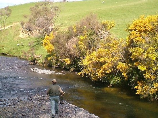 Trout Fishing at The River Lodge