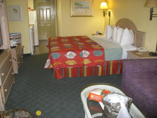 Tropical Winds Oceanfront Hotel: Our Room