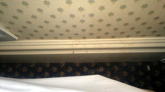 The Grand Hotel: Filthy skirting board behind bed.