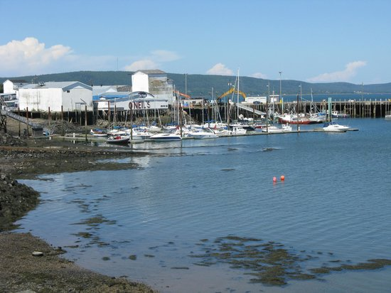 Dockside Restaurant and Bar: The view from our table
