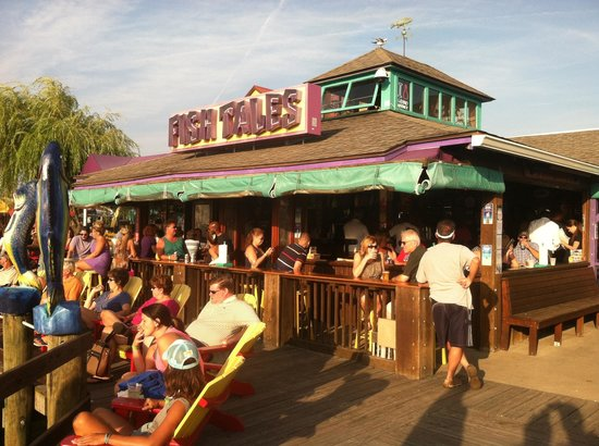 Fish Tales Bar & Grill: From the boat