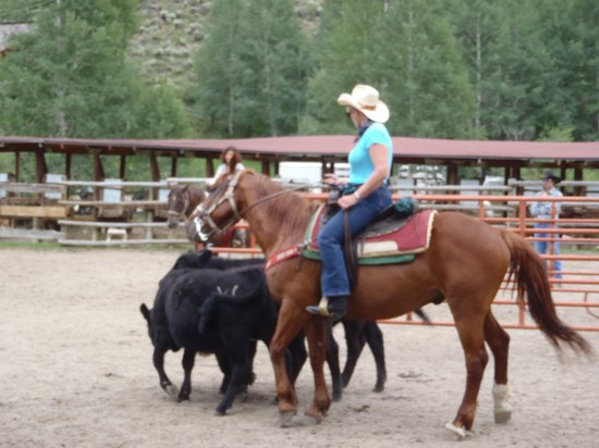 Drowsy Water Ranch : A Rodeo Experience
