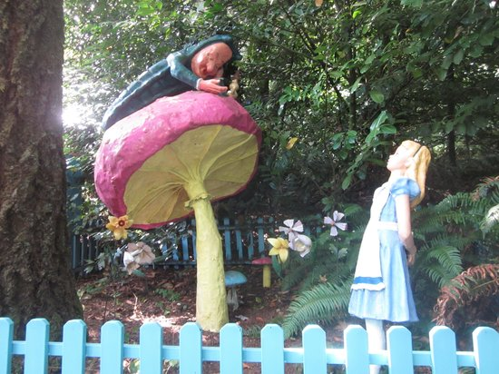 Enchanted Forest Theme Park : Alice