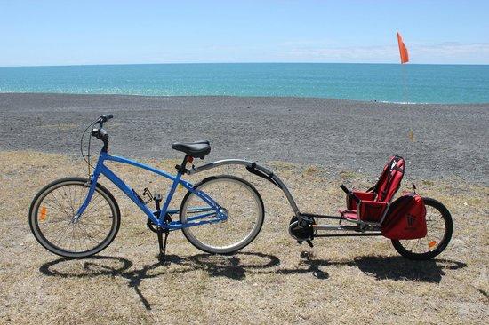 Fishbike Bicycle Rentals: Cruiser bike and tag-a-long