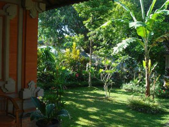 Gusti Kaler House : Garden view from house patio