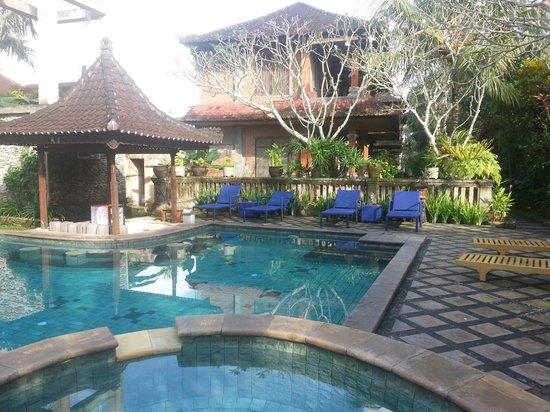 Ubud Bungalow: nice small pool