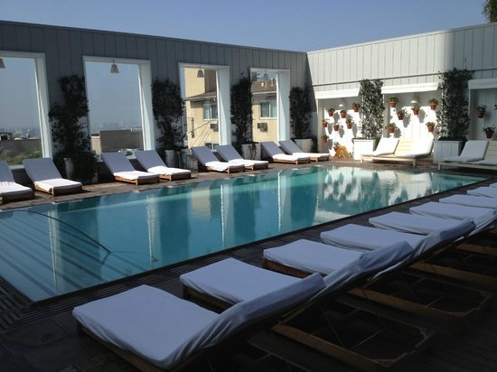 Swimming pool picture of mondrian los angeles hotel - Best hotel swimming pools in los angeles ...