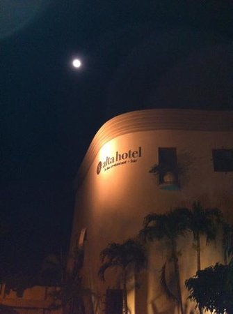 Hotel Alta Las Palomas: outside the hotel at night.