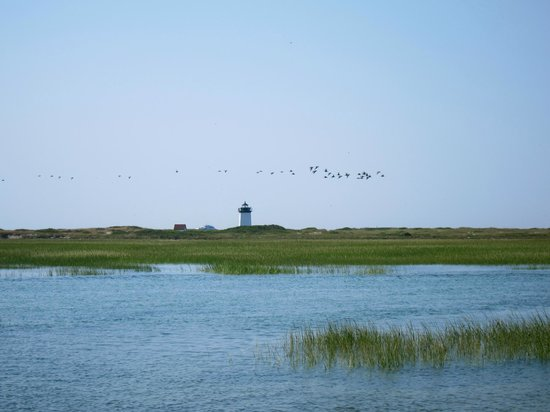 Long Point: Looking at the lighthouse from the breakwater
