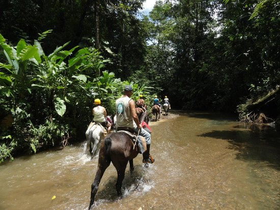 Finca Valmy Tours: Riding through the river