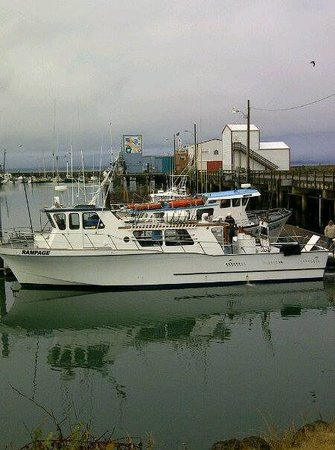 Westport Sport Fishing
