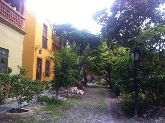 Quinta Loreto: lots of vegetation/greenery