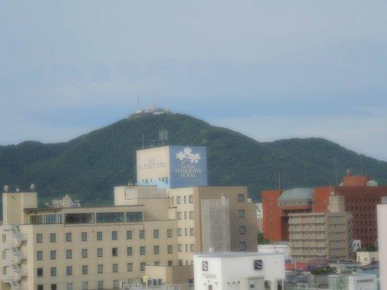 Hotel Paco Hakodate: 函館山が見えます