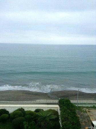 Kamogawa Sea World Hotel : ホテル客室5階からの眺め