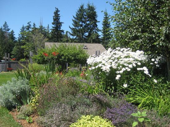 La Boulange Organic Breads : Perennial garden.