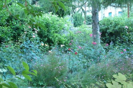 Lemons Guesthouse: Beautiful Garden!