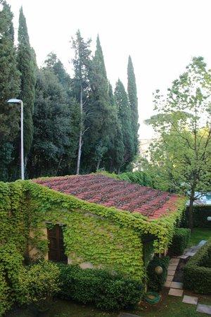 Hotel Villa Gabriele D'Annunzio: Jardim
