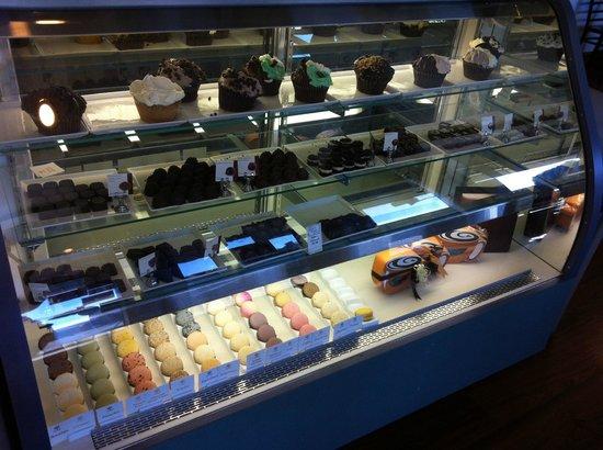 Essential Chocolate Desserts Display Case