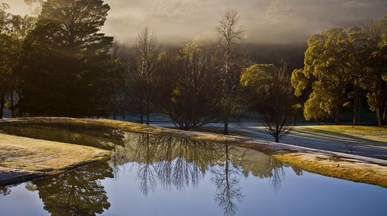 Bowral, Austrália: Misty morning on course