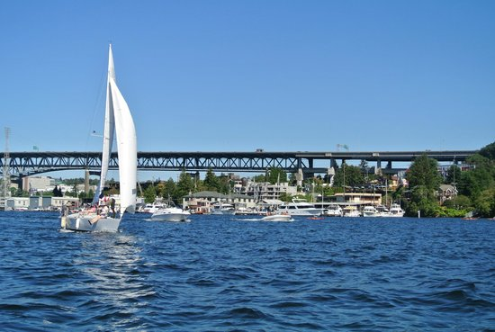 Ride the Ducks of Seattle : On the water in Lake Union