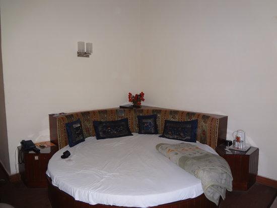 Hotel Rama Inn : comfy bed
