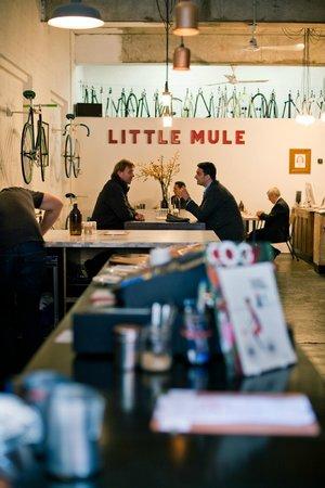 The Little Mule Co.