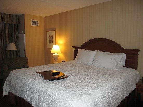 Hampton Inn NY - JFK : Bedroom