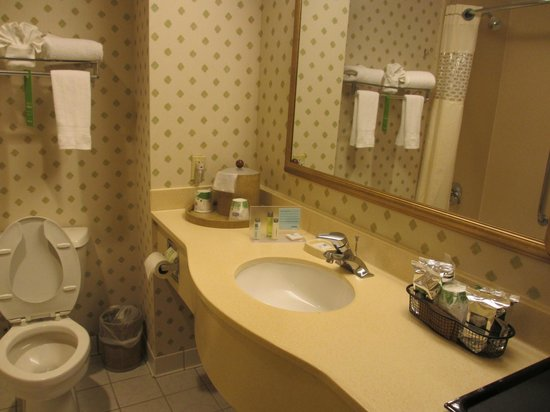 Hampton Inn NY - JFK : Bathroom