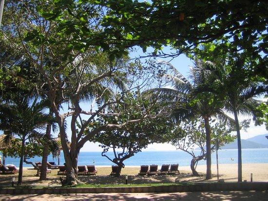 Majestic Nha Trang Hotel : пляж около отеля