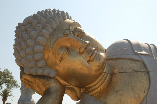 Buddha Eden Garden: Buddha Deitado 15m