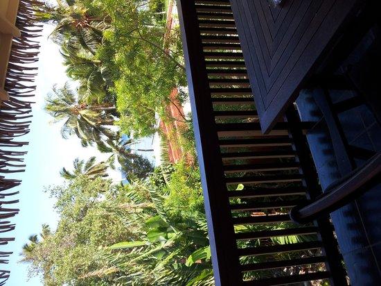 Castaway Resort: From the balcony to the ocean - room 11