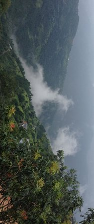The Chalets Naldehra: horse in the clouds