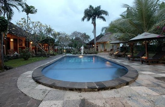 Bona Village Inn: Pool
