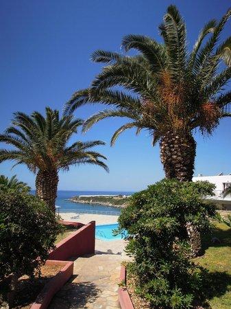 Hotel Porto Belissario : Vue de la terrasse du restaurant