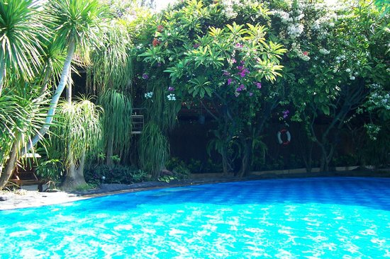 Tropical pool picture of green garden tuban tripadvisor for Green garden pool jakarta